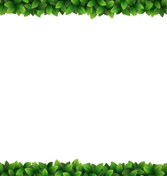 Green leaves frame isolated on white vector