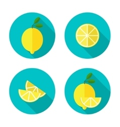 Lemon flat icon vector