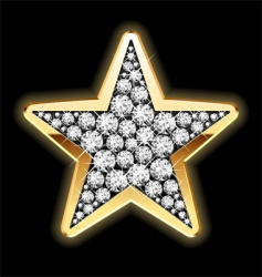 star shape in diamonds vector image vector image