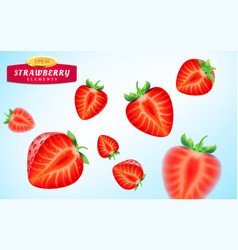 strawberry set detailed realistic ripe juicy vector image vector image