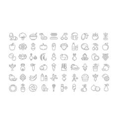 Set flat line icons vegetarianism vector