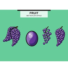 Set of grapes and grape bunches vector