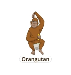 Orangutan cartoon vector