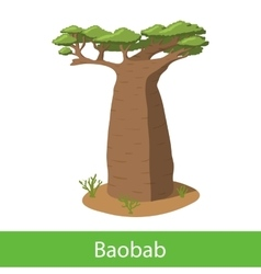 Baobab cartoon tree vector