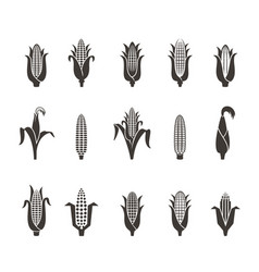 corn icon black and white vector image