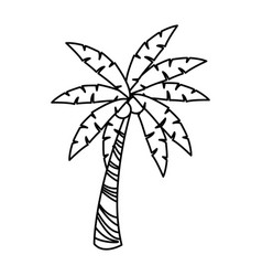 Palm tree tropical natural leaves image vector