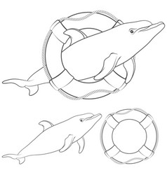 With a dolphin and a life buoy vector