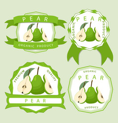 the fruit pear vector image vector image
