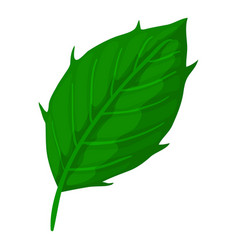 Thistle leaf icon cartoon style vector