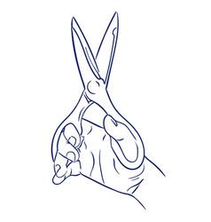 kitchen scissors in hand vector image