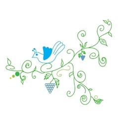 Doodle color abstract vine grape and bird vector