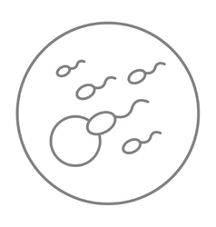 Fertilization line icon vector image vector image