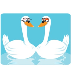 funny swans in love vector image vector image