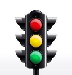 Isolated traffic light vector