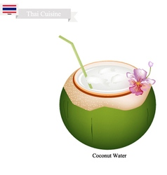 Coconut water drink a famous beverage in thailand vector