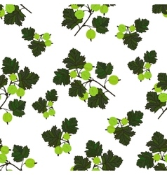 Green berries template vector