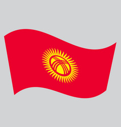 flag of kyrgyzstan waving on gray background vector image vector image