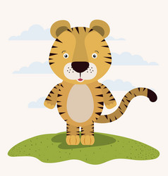White background with color scene cute tiger vector