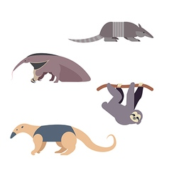 South america animals vector