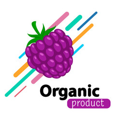 Blackberry simple background vector