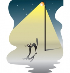 cat in the night vector image vector image