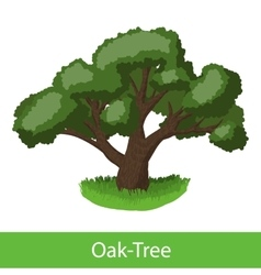 Oak-Tree cartoon icon vector image