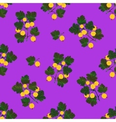 Colored gooseberries seamless pattern vector