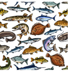 fish seamless pattern for seafood design vector image