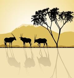 Kenya - African landscape vector image
