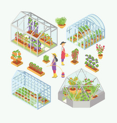 Set of 3d glass greenhouse hotbed with seedlings vector