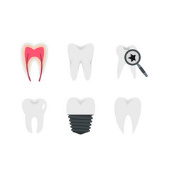 tooth icon set flat style vector image vector image