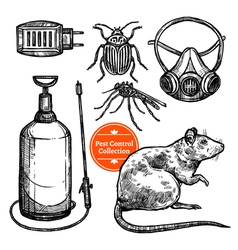 Hand drawn sketch pest control vector
