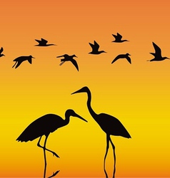 Storks in the middle of a reservoir on an orange vector