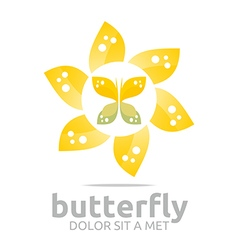 Beautiful butterfly design icon vector