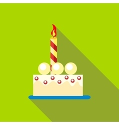 Birthday cake icon flat style vector