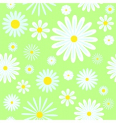 Chamomiles seamless pattern vector