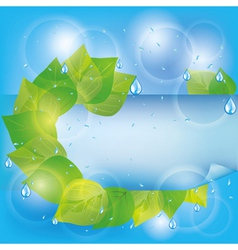 Spring eco background with green leaves vector image