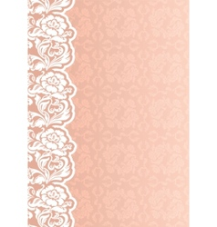 flower background with lace vector image