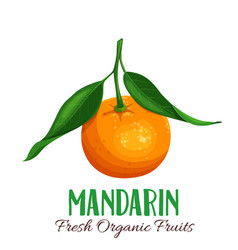 Mandarin vector