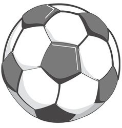 Soccerball vector image