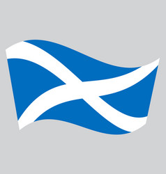 Flag of scotland waving on gray background vector