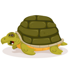 Cartoon cute turtle character vector
