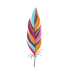 Colored large bright bird feather vector