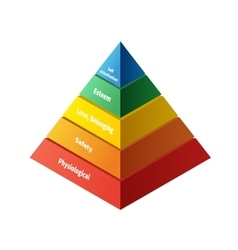 Maslow pyramid with five levels hierarchy of needs vector image