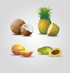 Colorful geometric polygonal fruits set vector
