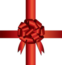 Present wrapping ribbon vector