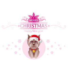 Puppy yorkshire terrier dog in santa claus hat vector