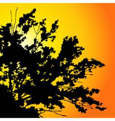 sunset tree vector image vector image