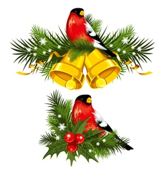 Bullfinch with christmas bells vector