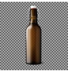 Blank transparent brown realistic beer bottle vector